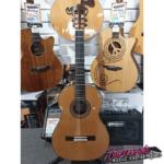 ukulele-guitar